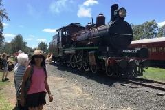 Amamoor station, Mary Valley rattler